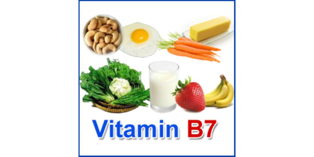 B7 food sources