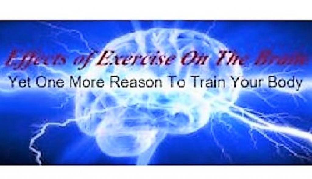 image of healthy brain waves