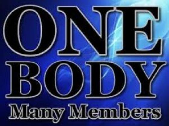 Verse one body many members written in Black on blue background