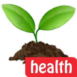 A health leaf.
